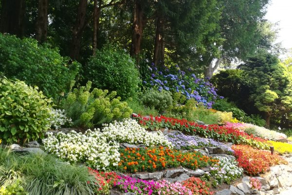 BEAUTIFUL GARDENS of Lake Como